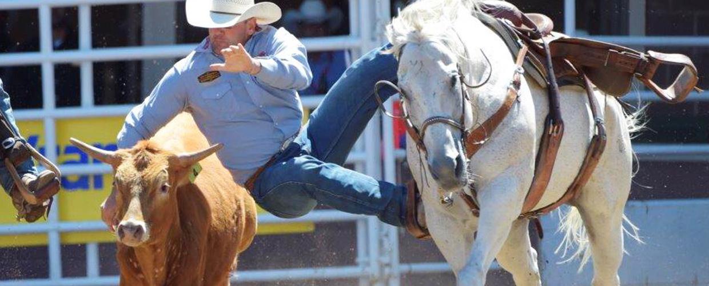 2018 Calgary Stampede Saddle Bronc Results